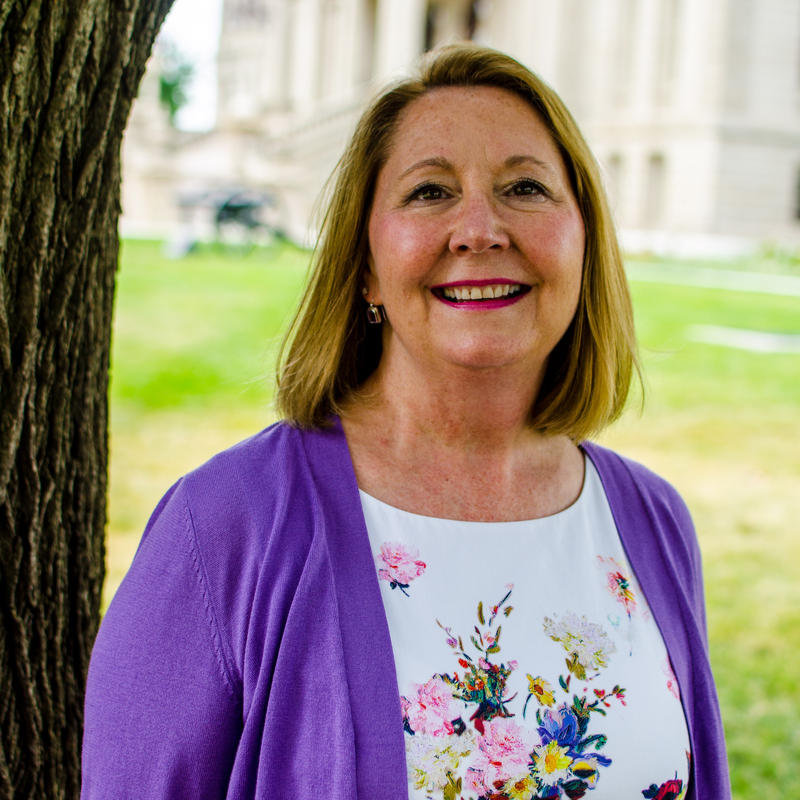 Gov. Rick Snyder appointed Heidi Grether in July to lead the Department of Environmental Quality