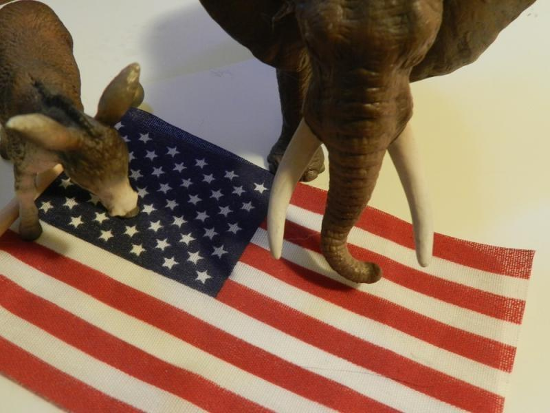 donkey and elephant standing on american flag