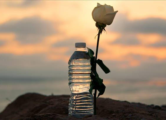"Ghiyath Matar, who handed out water bottles and roses to security forces, was known as ""the Gandhi of Syria."""