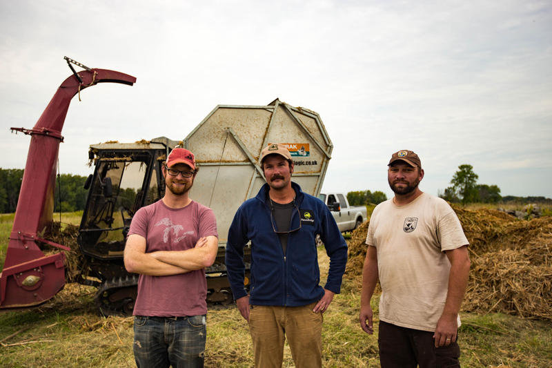 Scientists [left to right] Drew Monks, Brendan Carson and Eric Dunton use a special harvester to collect cattails in the Shiawassee National Wildlife Refuge.