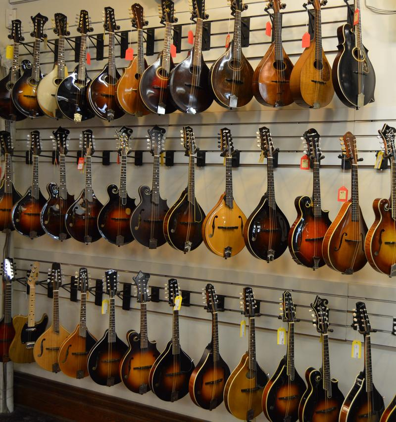 Some of the mandolins at Elderly Instruments.