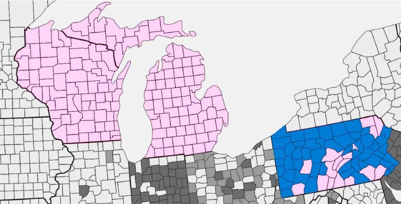 According to Halderman, pink counties have a paper trail. Blue counties do not.