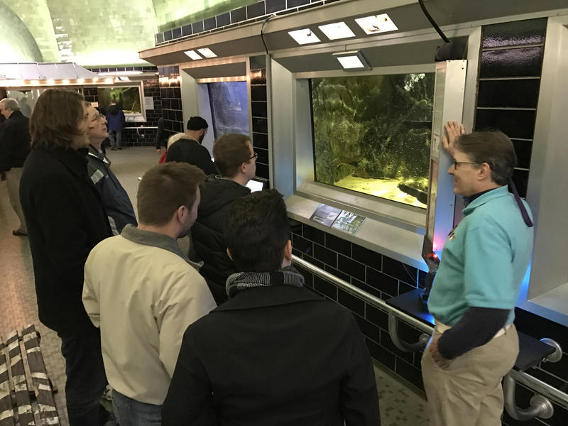 Here is one of Belle Isle Aquarium's volunteers, Steven Machlay (volunteer committee chair), acting as a docent discussing the new piranha with guests on Black Friday. They had over 1,100 people that day, and are on track to hit 160,000 this year.