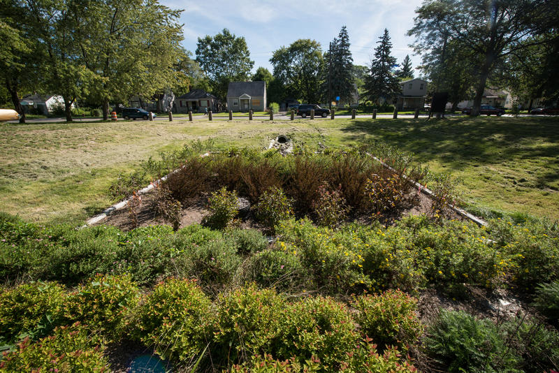 A bioretention garden on Evergreen Avenue in Detroit's Warrendale neighborhood.