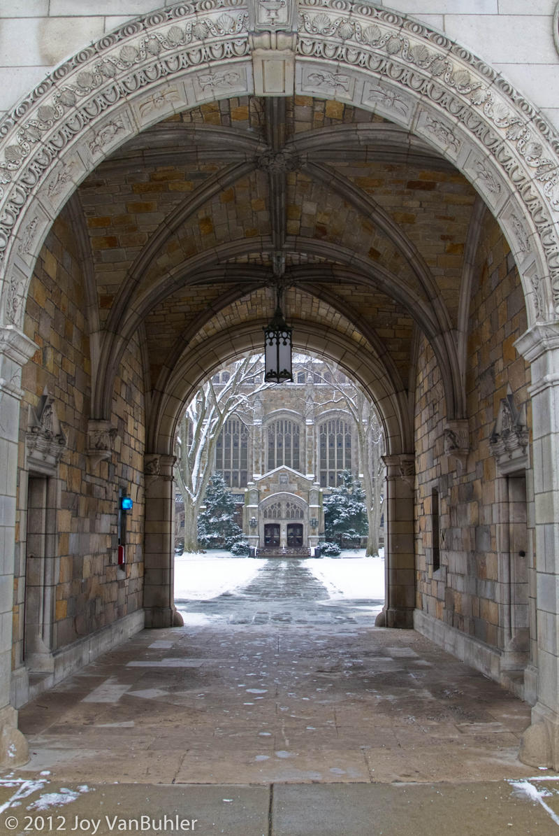 The U of M law quad in winter