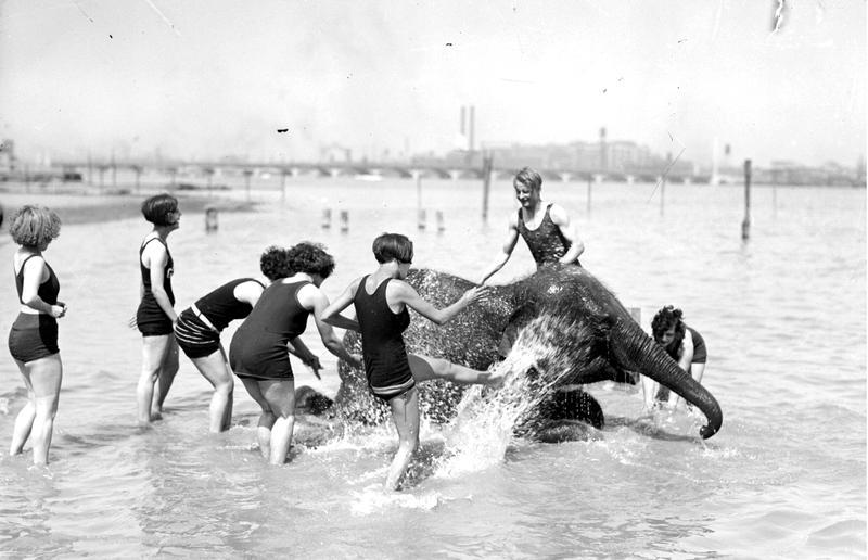 Sheba the Elephant with bathers on Belle Isle Beach (undated)