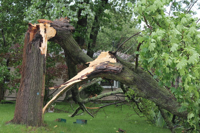 Wind damage in Michigan in 2011