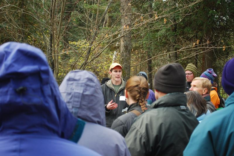 Warmer winters compress the window of opportunity for forest maintenance.
