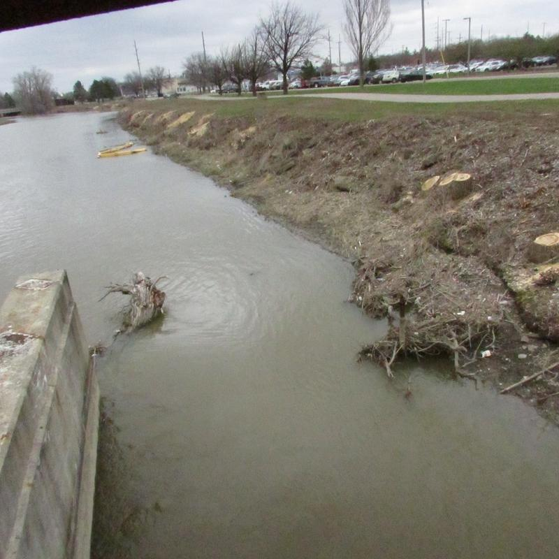 Trees have already been removed a portion of the Flint River in preparation for the dredging operation