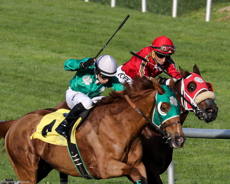 A new bill would change how people can bet on horse races.