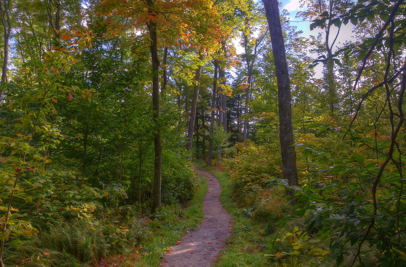 A hiking trail in the Upper Peninsula