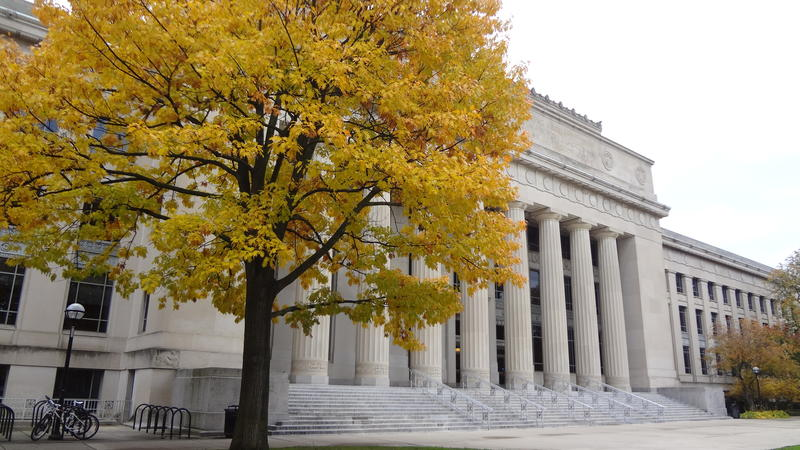 white building with columns and yellow tree in front
