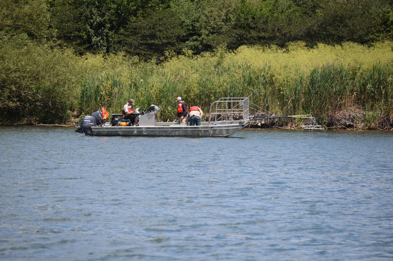 The find of a silver carp on June 22, 2017 in the Illinois Waterway 9 miles from Lake Michigan triggered the Asian Carp Regional Coordinating Committee's Contingency Response Plan, which included two additional weeks of intensive sampling