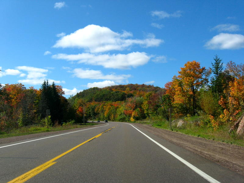 Highway surrounded by trees beneath a blue sky