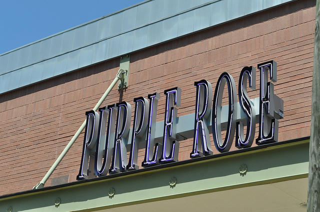 purple rose sign