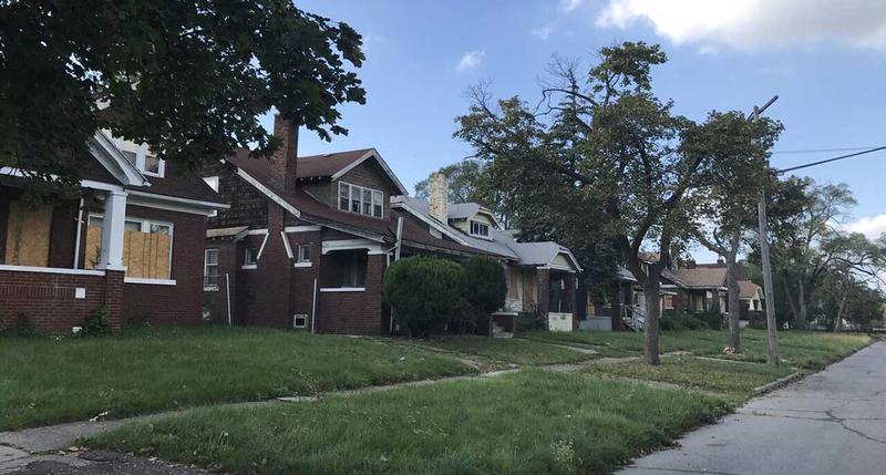 Tax foreclosures have ravaged this block of Monte Vista on Detroit's west side. All but seven of 22 homes have been seized for nonpayment of taxes and fallen into disrepair or been razed
