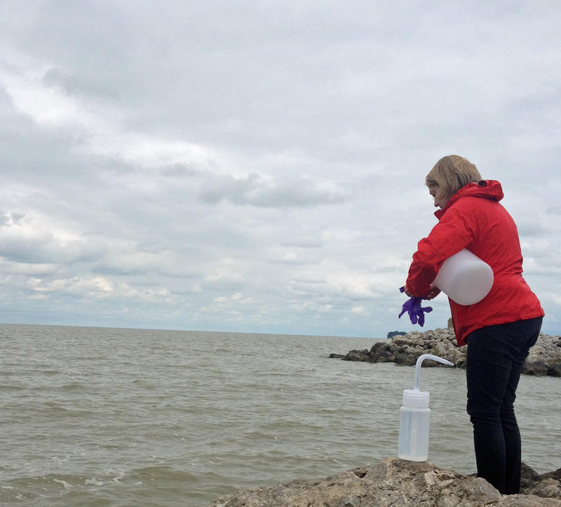 Researcher Jessica Axson collecting a sample.