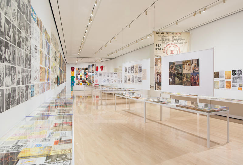 Michigan Stories: Mike Kelley and Jim Shaw, installation view at the MSU Broad, 2017.