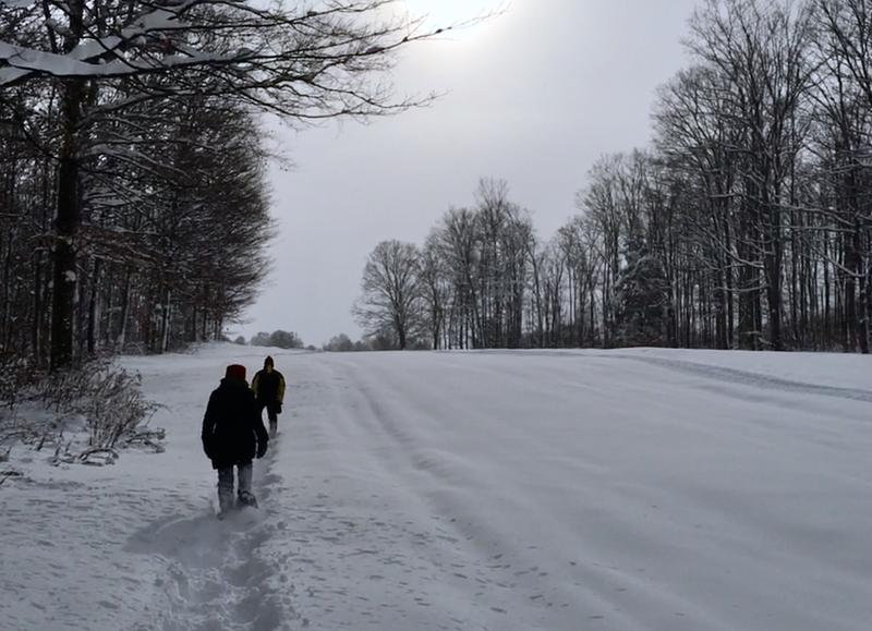 Snowshoeing in northern Michigan