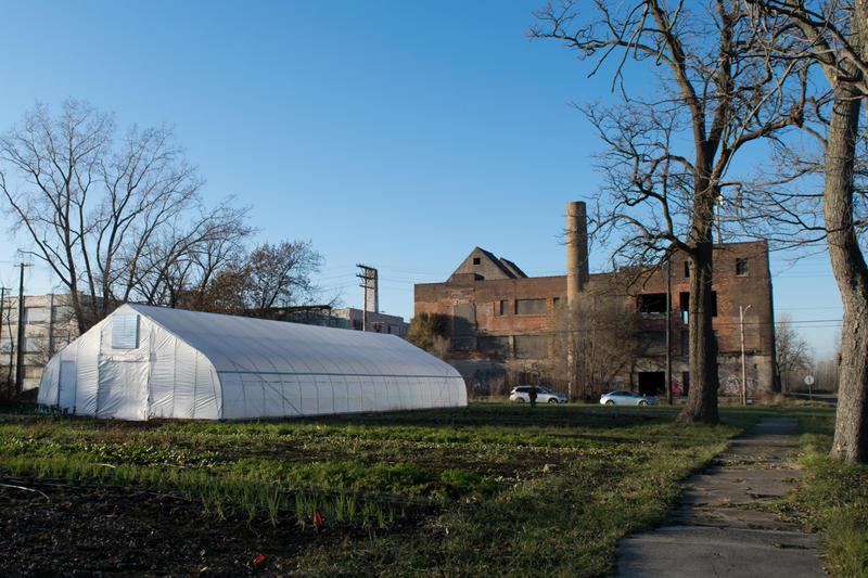 Acre, Ryan Anderson and Hannah Clark's farm.