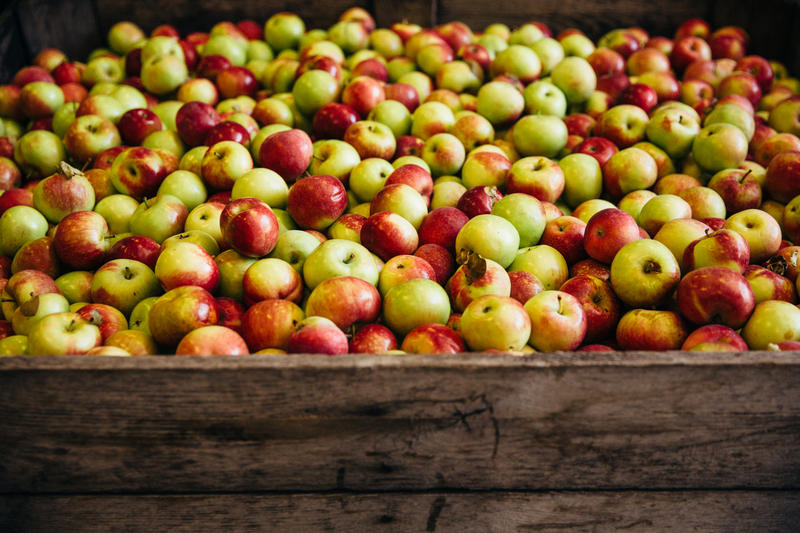 A crate full of apples for cider making