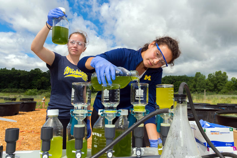 researchers with test tubes of green liquid