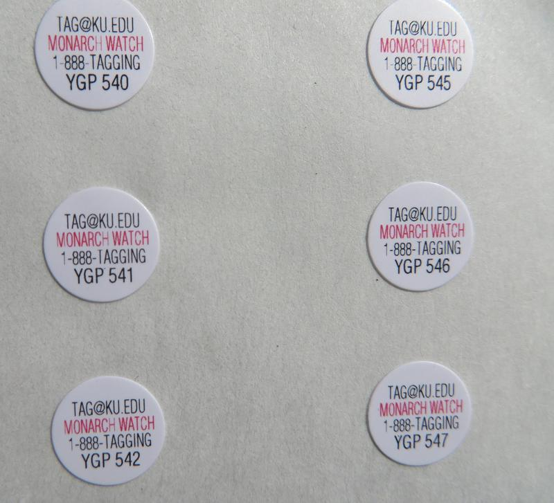 A sheet of butterfly tags.