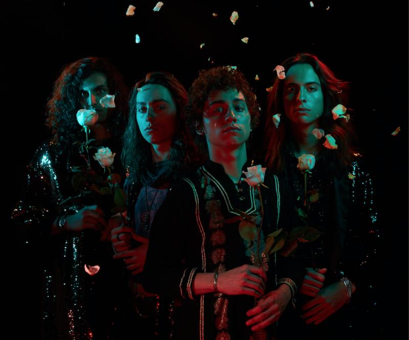 The four members of Greta Van Fleet
