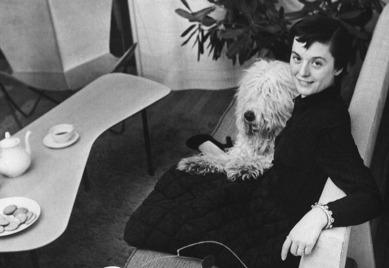 Florence Knoll Bassett sits at a desk with a dog in her lap