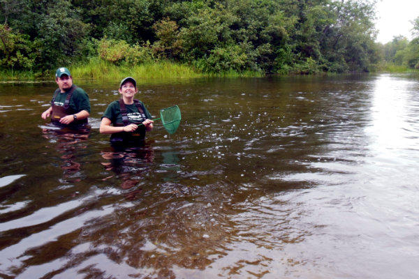 Researchers from Michigan State University help release the sturgeon in the middle of the Black River.