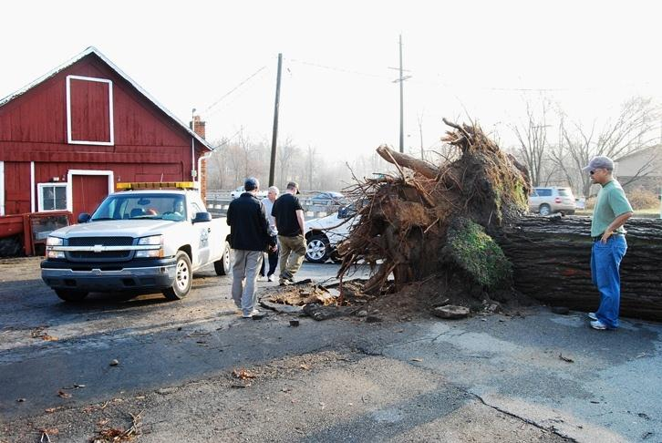 Dozens of trees were uprooted after the March 15 tornado in Dexter. This photo was taken at the Dexter Cider Mill.