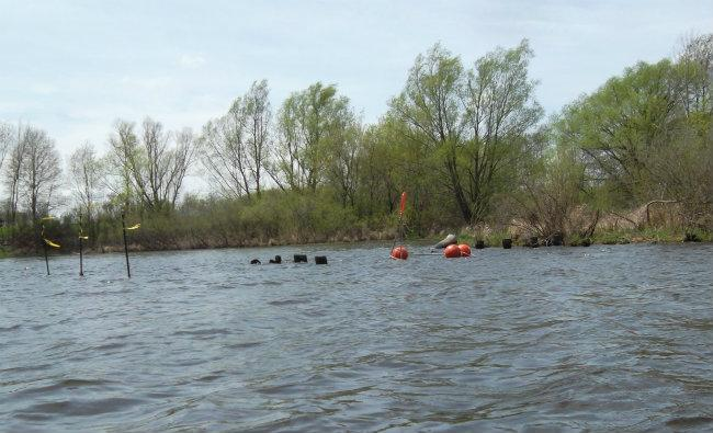 Sediment traps are marked in special areas along the river where flecks of oil that remain should migrate and settle.