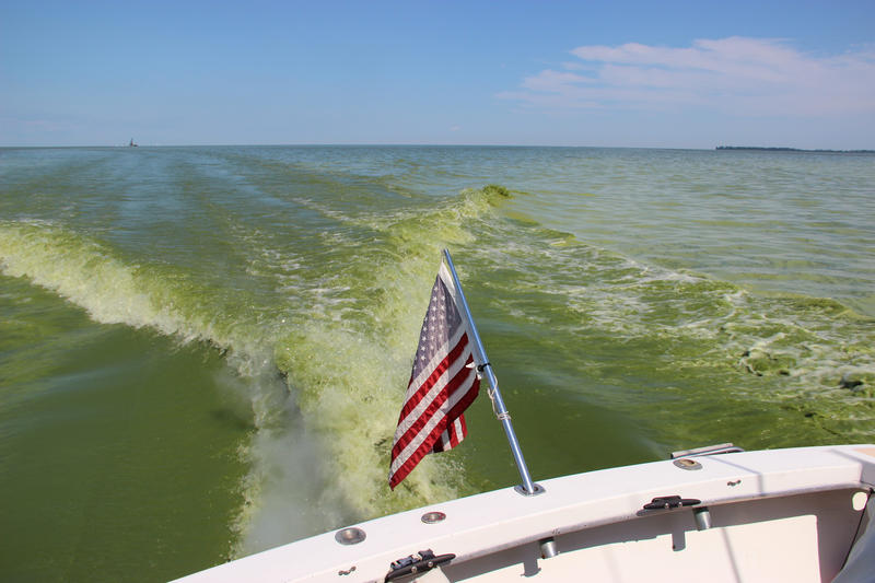 Algae blooms generally start later in the summer and into the fall.