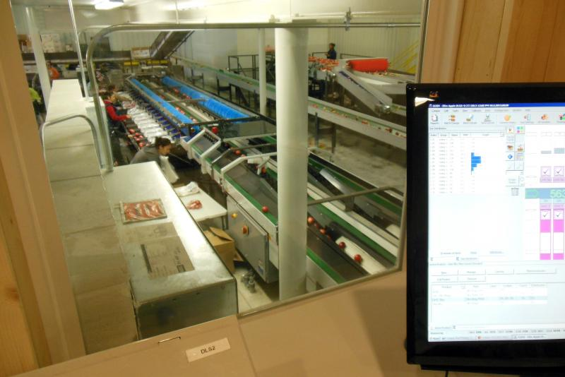 Operators inside the plant's control room can control where the apples are sent and keep track of orders.