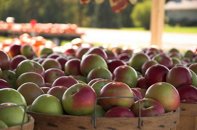 Apples from an orchard in Ottawa County.