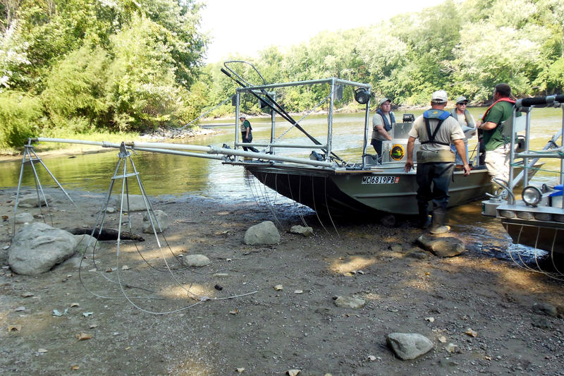 Officials from the DNR modified these fishing boats for electrofishing.
