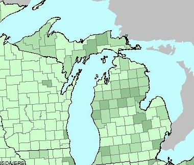 Map of Michigan showing participation in the food stamp program per capita