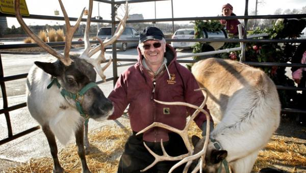 Kerry Bentivolio with his reindeer.