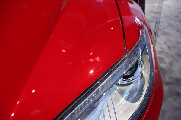 A fingerprint on the Tesla Model S at the Detroit auto show.
