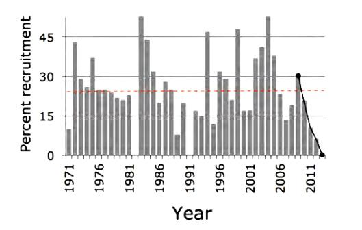 Pup recruitment on Isle Royale (percentage of pups that survive to see their first winter). The black line shows the five-year decline in recruitment.