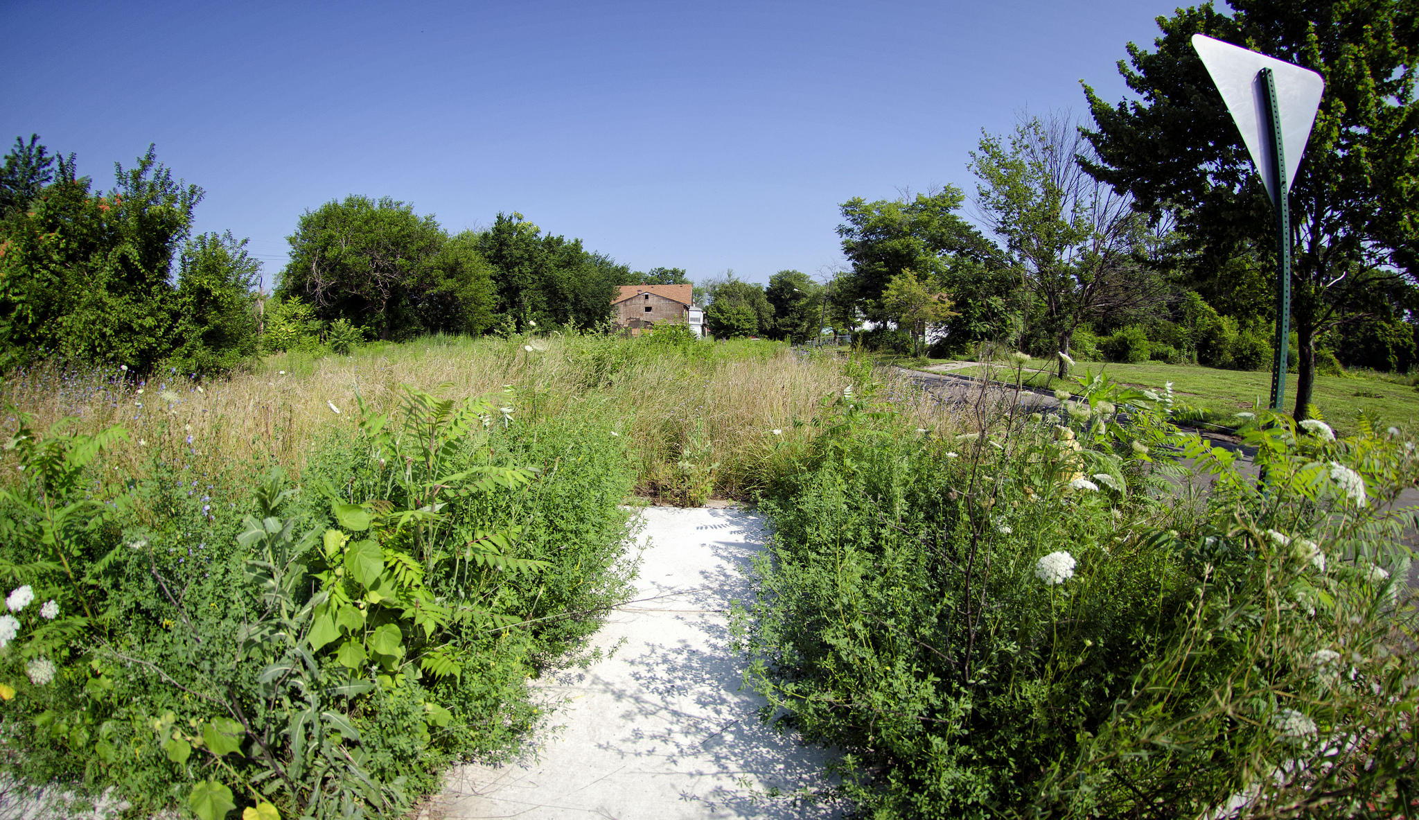Detroit Residents Might Get Vacant Lots For 100