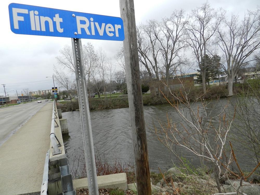 Image result for Flint River