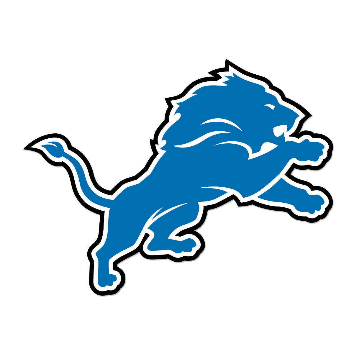 For the Detroit Lions 6a3f9eca236
