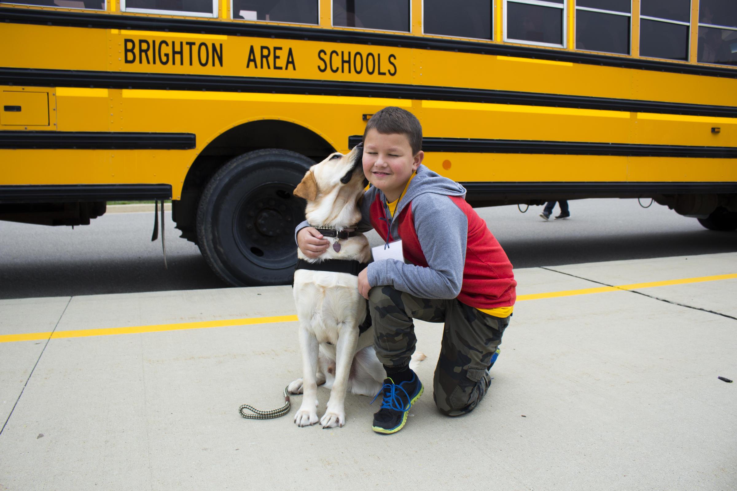 Brighton Expands School Therapy Dog Program Michigan Radio