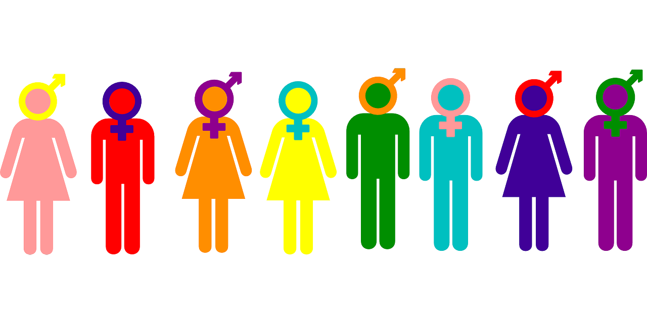A look at the different genders