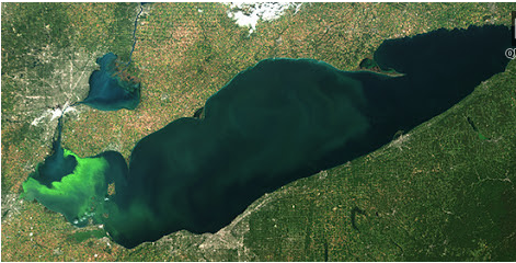 Lake Erie forecast for cyanobacterial blooms: not as big as past year