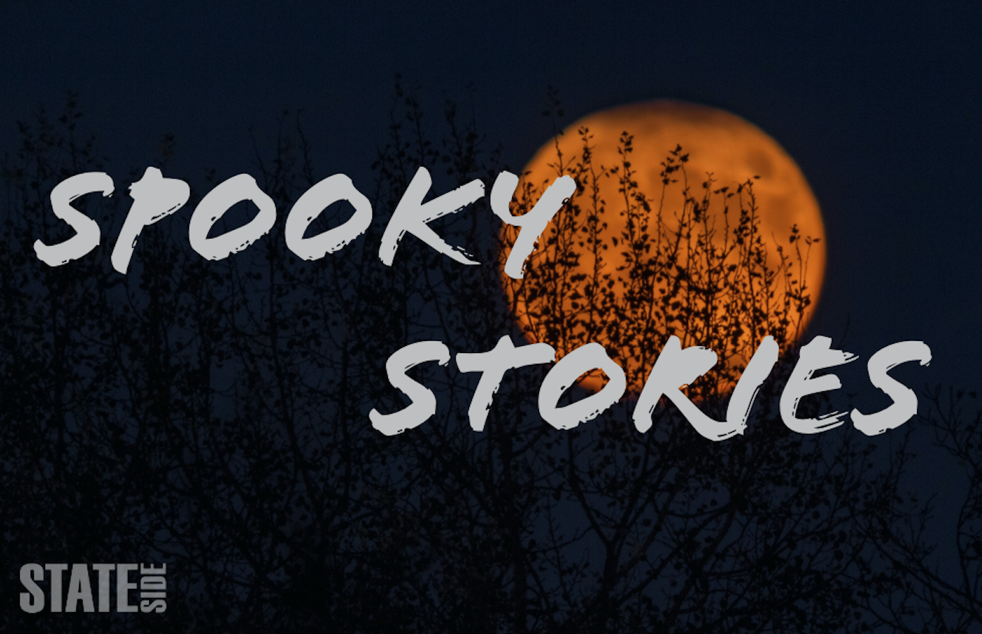 spooky stories: bewitching tales for your halloween season