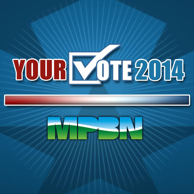 Your Vote 2014 logo