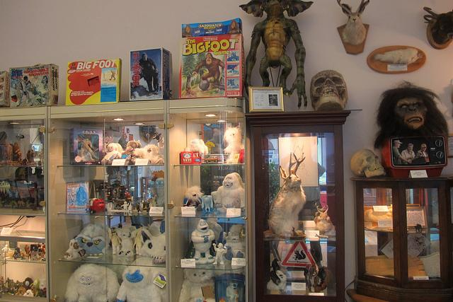 Some of the items at the cryptozoology museum.