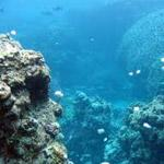Changing Seas, Human Challenges